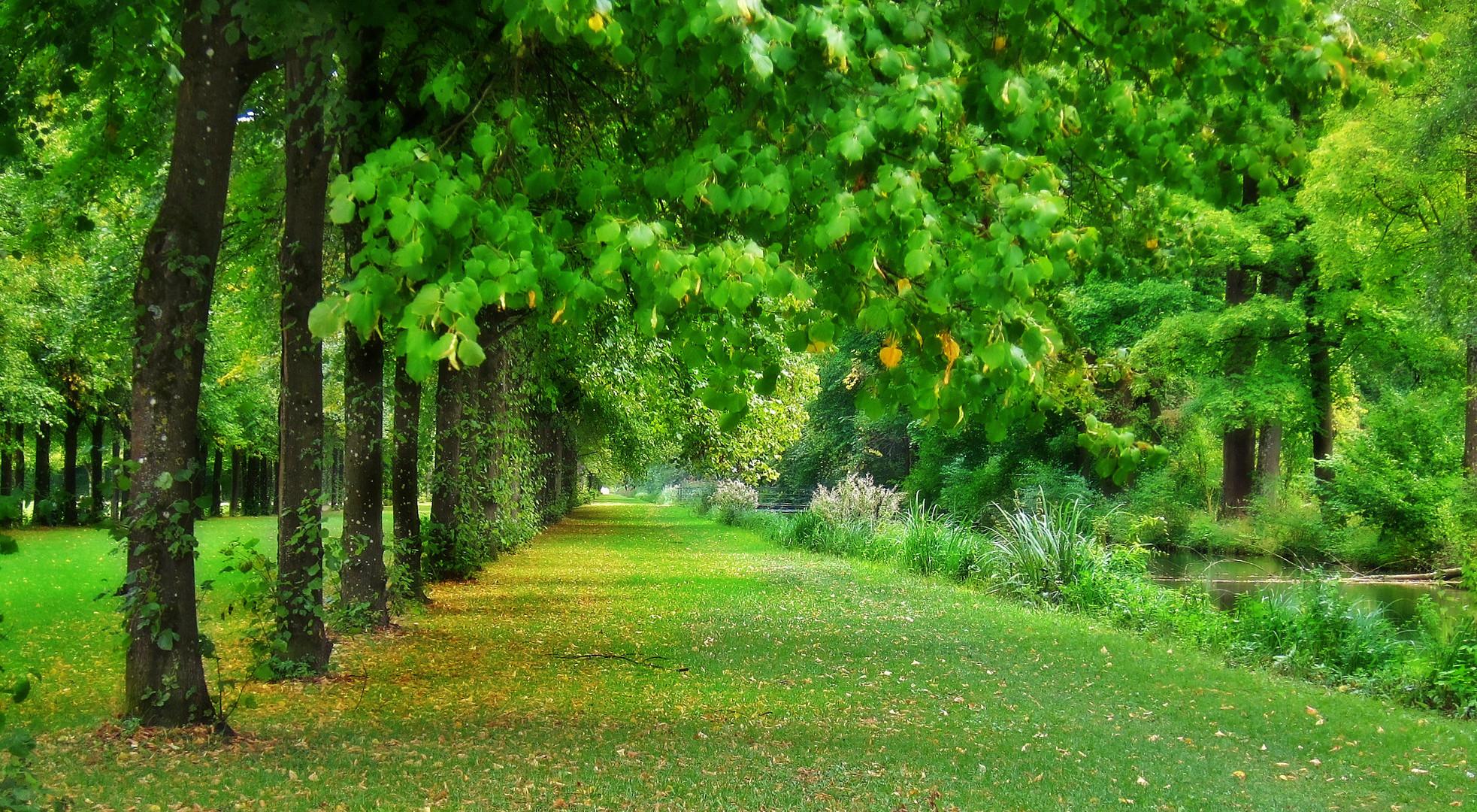 der Herbst kommt auf ganz leisen Sohlen