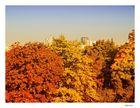 Der Herbst kommt über die Stadt