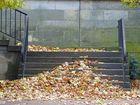 Der Herbst liegt auf den Stufen