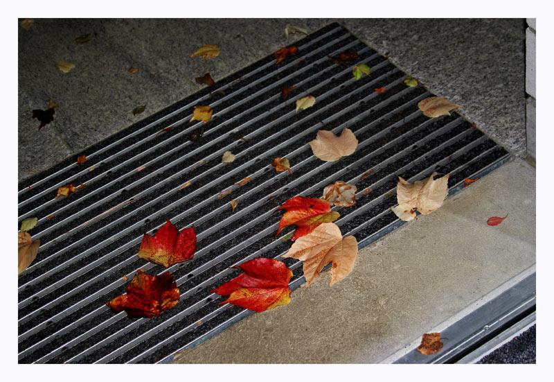 Der Herbst liegt vor der Tür
