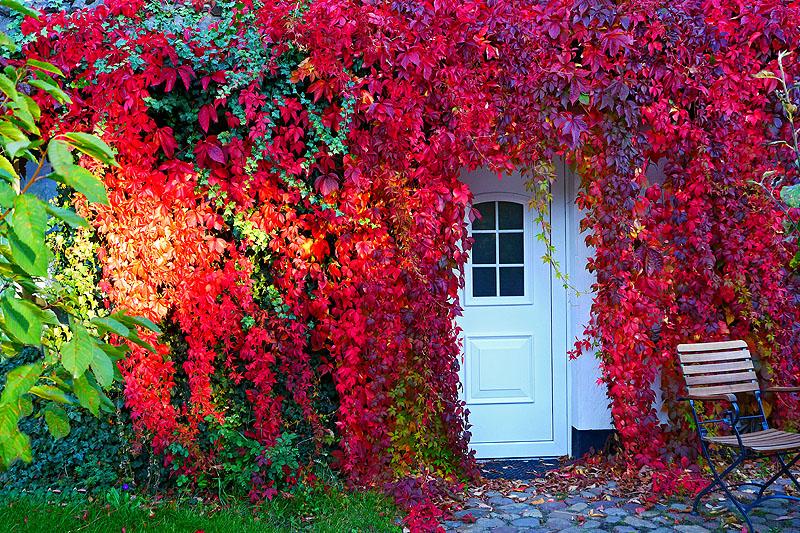 Der Herbst macht ernst...