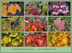 der Herbst malt.....