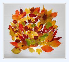 Der Herbst malt alles bunt