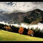 Der Herbst neigt sich dem Ende #10
