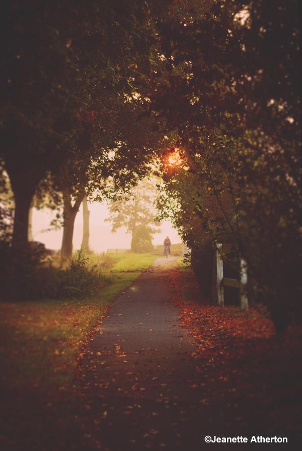 der Herbst so nah...