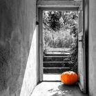 der Herbst tritt ein...