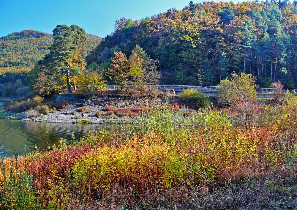 Der Herbst wird täglich bunter