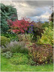 der Herbstgarten