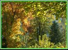 Der Herbstmaler