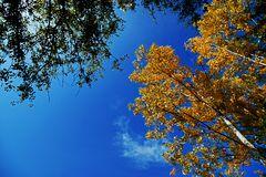 Der Himmel so blau...