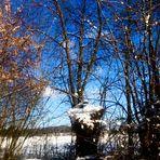 Der Himmel so blau an Wintertagen