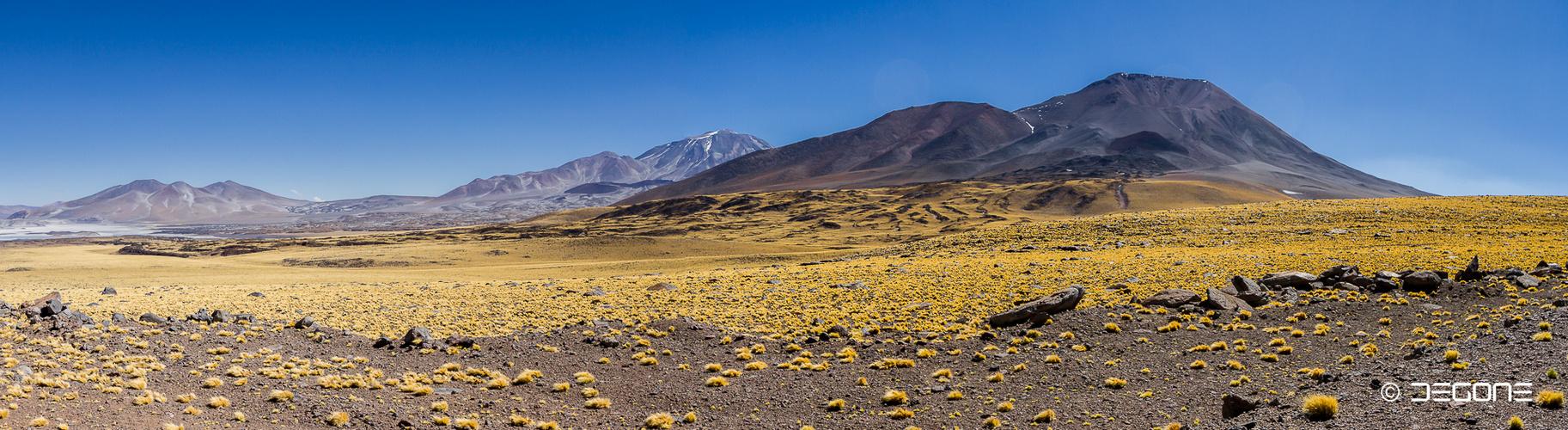 Der höchste Vulkan der Erde -  Ojos del Salado