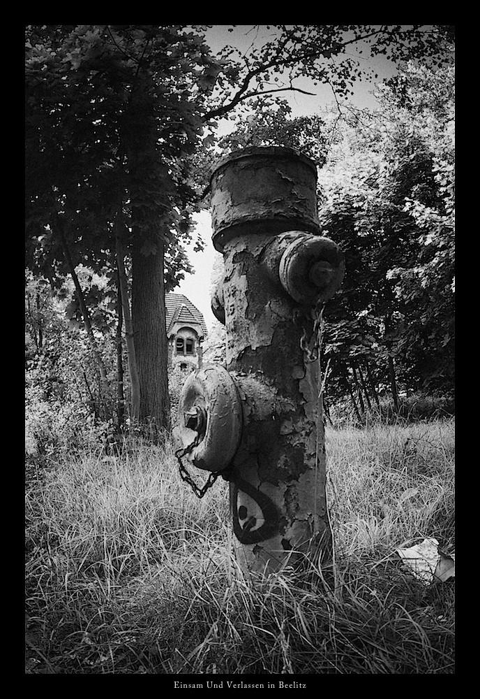 Der Hydrant - Einsam Und Verlassen
