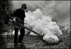 ~ Der Insektenkiller ~