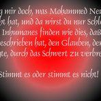 der Islam ist friedlich........!!! ... oder blutige Pupille!