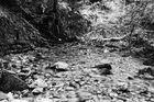 Der junge Fluß