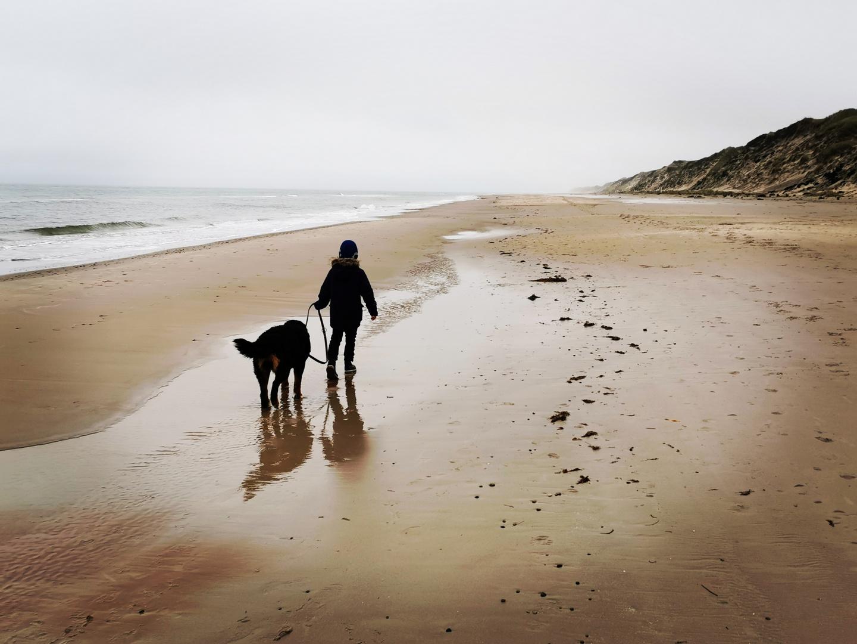 Der Junge mit dem Hund