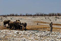 Der Kampf gegen die Dürre