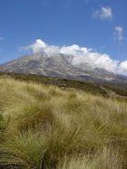 Der Kilimanjaro von Norden