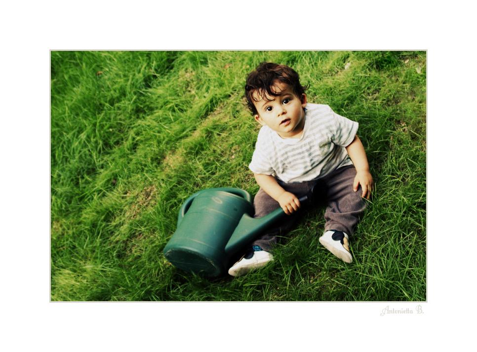der kleine gartner