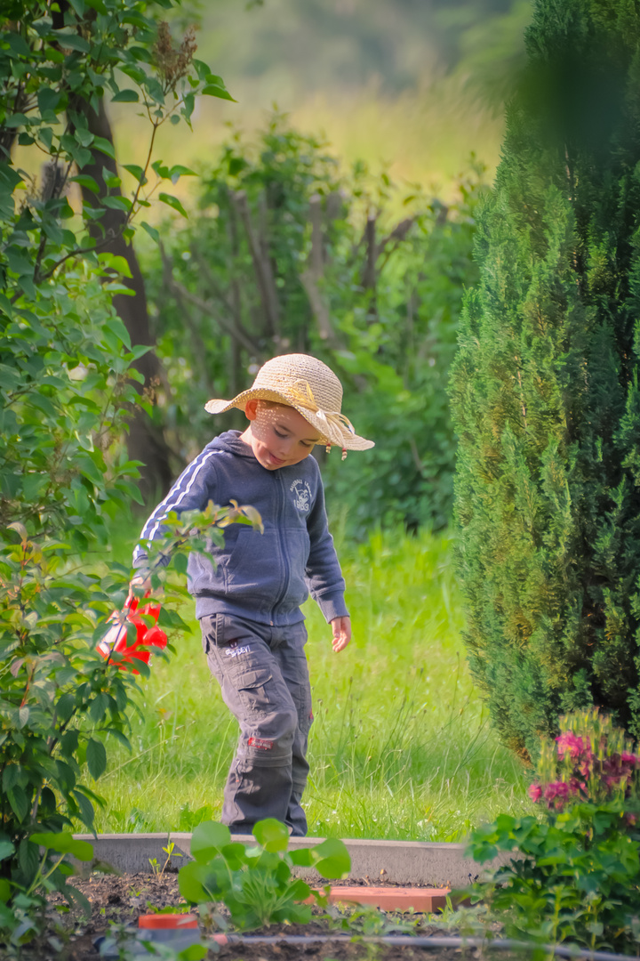 Der kleine Gärtner