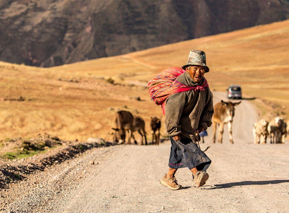 DER KLEINE HIRTE VON PERU