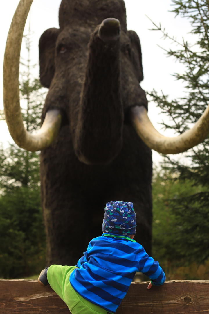 Der kleine Mann und das Mammut