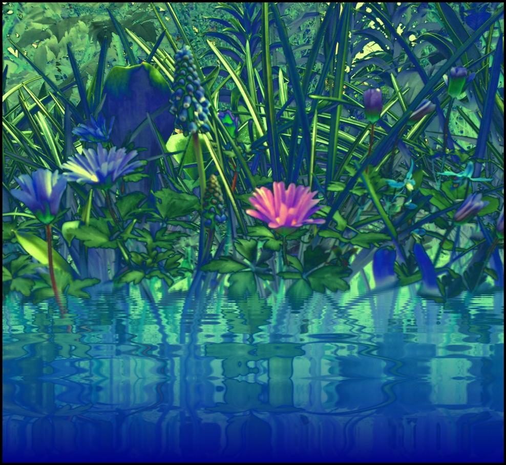 Der kleine Teich 2