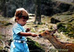 Der kleine Tierfreund 2