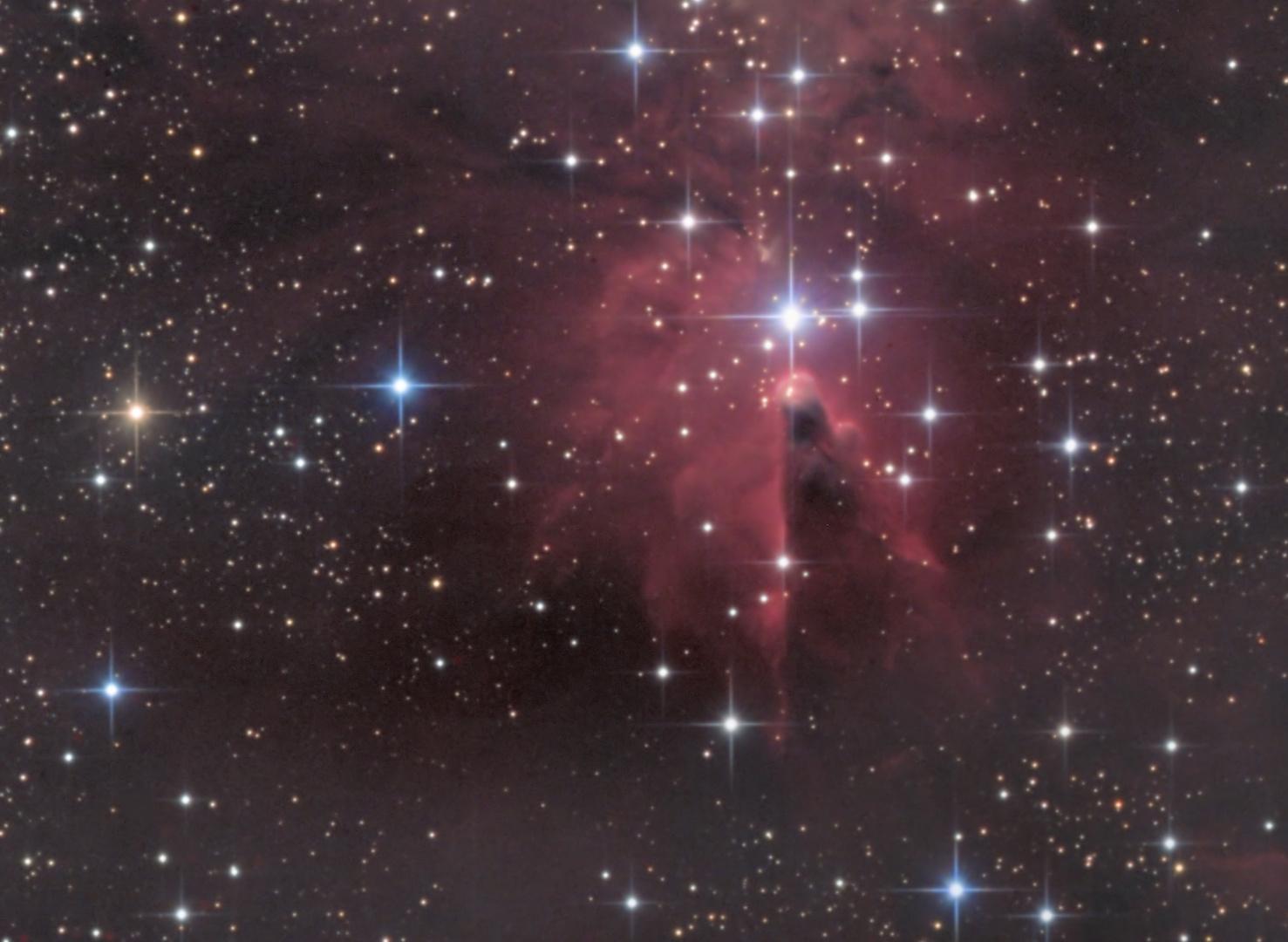 Der Konusnebel im Sternbild Einhorn