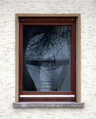 Der Kopf im Fenster