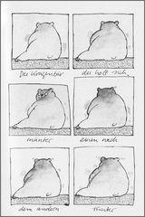 Der Kragenbär, das unbekannte Wesen