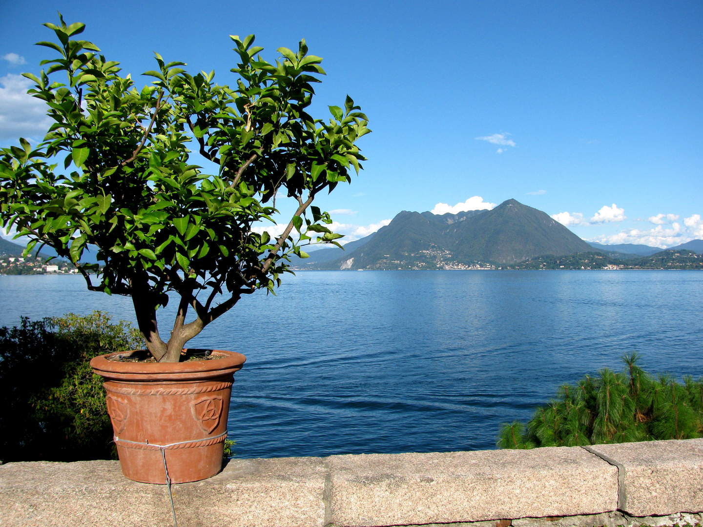 Der Lago bei Stresa
