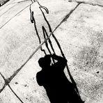 Der lange Schatten ...