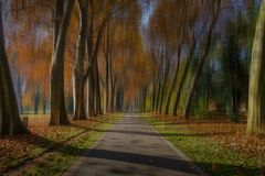 Der lange Weg im Park