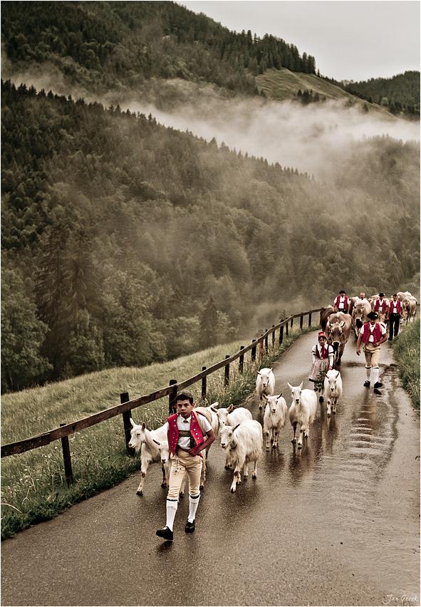 Der lange Weg zur Alp IV