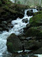 ..der Lauf des Wassers