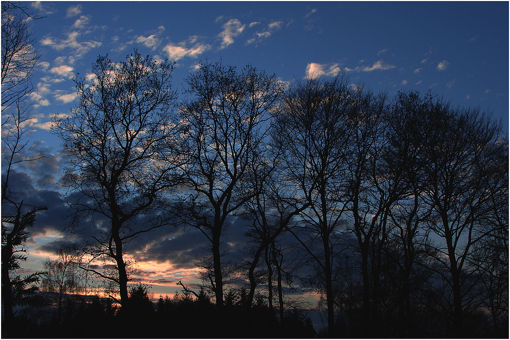 Der letzte Abendhimmel in 2008 Nr.2