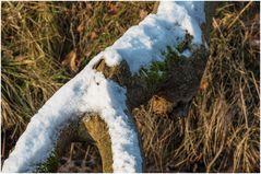 der letzte Schnee?