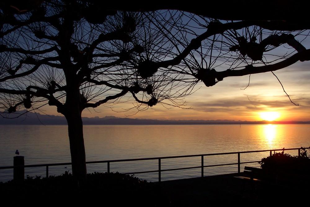 Der letzte Sonnenuntergang des Jahres 2006 am Bodensee