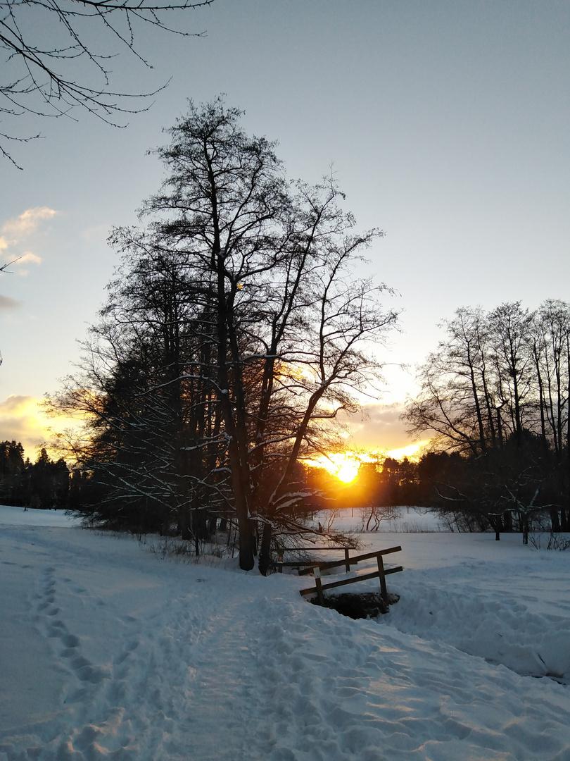 Der letzte Strahl der Abendsonne