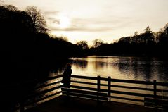 Der letzte Tag 2013 im Rombergpark 3