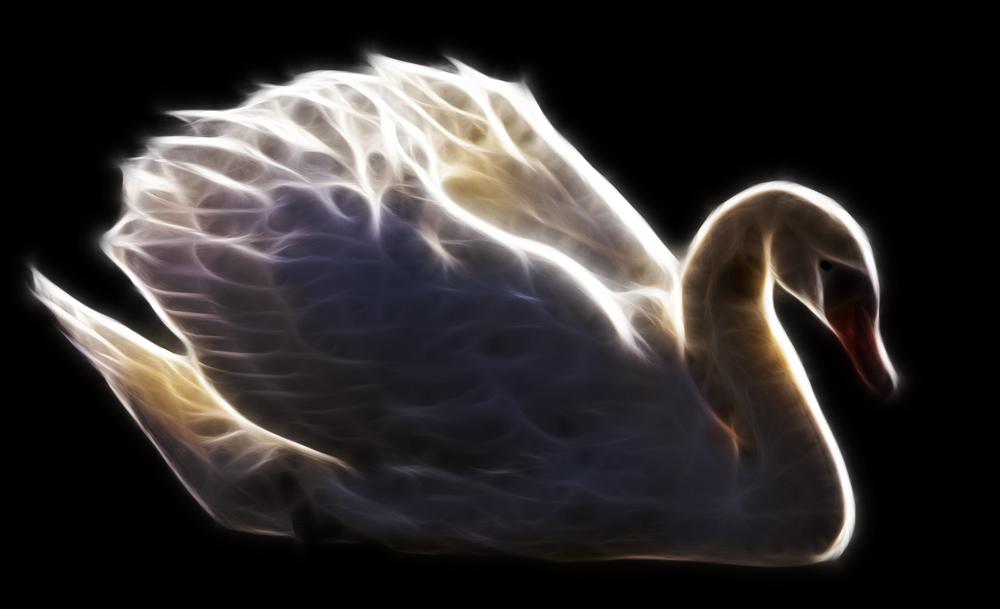 Der leuchtende Schwan mit Fractalius Filter