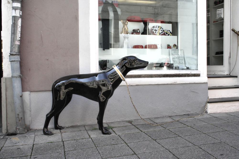 Der liebste Hund der Welt ;-)))