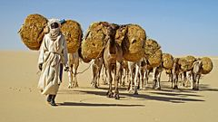 Der Madougou führt Die Karawane an