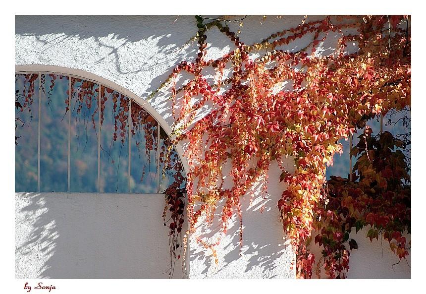 Der Maler Herbst