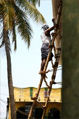 Der Mann auf der Leiter
