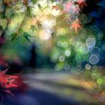 Der Mann im Blätterwald