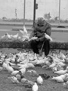 Der Mann mit den Tauben, Cordoba