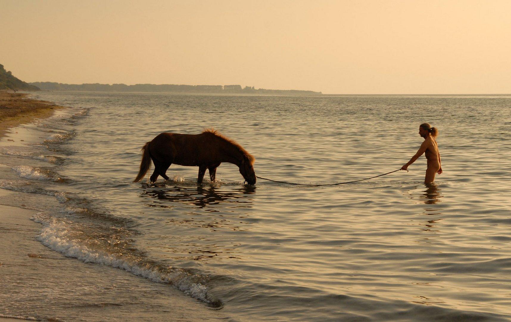 Der Mann und sein Pferd